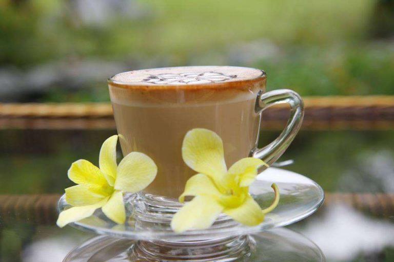cà phê vườn đá