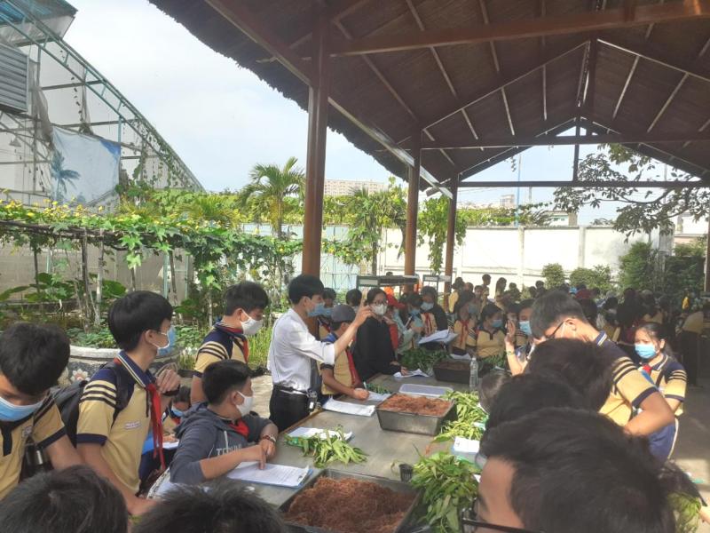 Trải nghiệm trồng rau thủy canh của học sinh trường THCS Tân Kiên tại CVVH Đầm Sen 1