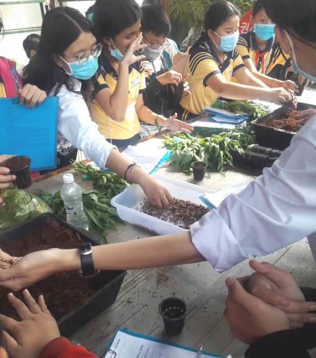 Trải nghiệm trồng rau thủy canh của học sinh trường THCS Tân Kiên tại CVVH Đầm Sen 2