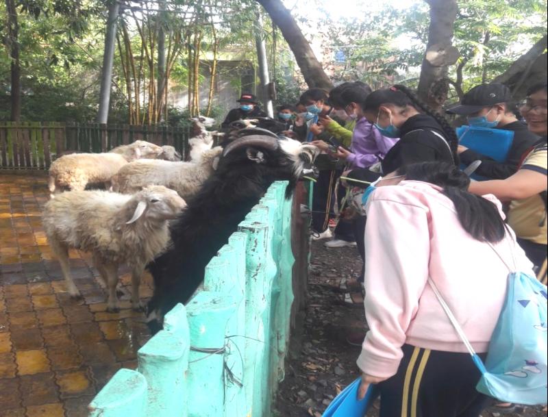 Trải nghiệm trồng rau thủy canh của học sinh trường THCS Tân Kiên tại CVVH Đầm Sen 6